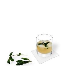 Verschiedene Whiskey Sour Dekorationen