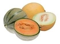 Cantaloupe Melone und Galiamelone